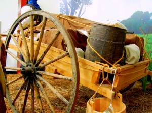 They Walked to Zion: The Mormon Handcart Trail